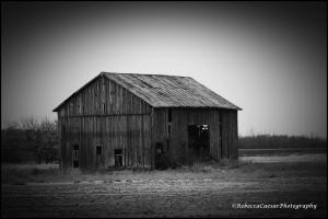 Abandoned barn in Gratiot County, Michigan