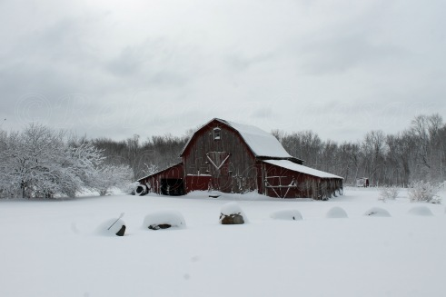 I love how the old barn looks after the snow